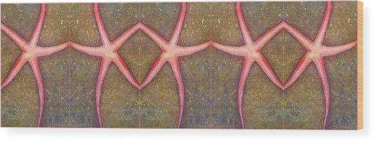 Starfish Pattern Bar Wood Print
