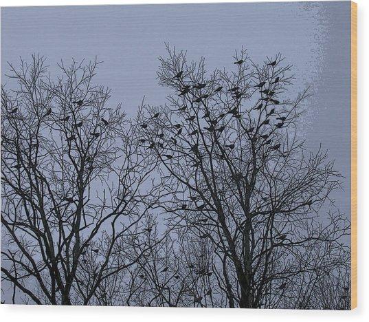 Starlings Wood Print
