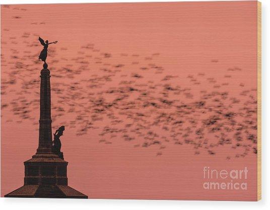 Starlings Sweeping Past Aberystwyth War Memorial Wood Print