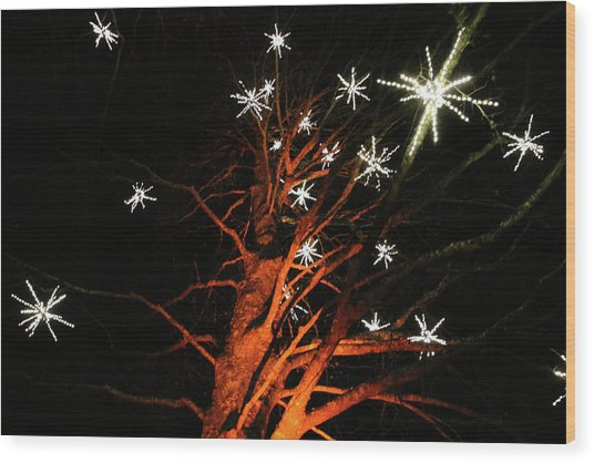 Stars In The Tree Wood Print