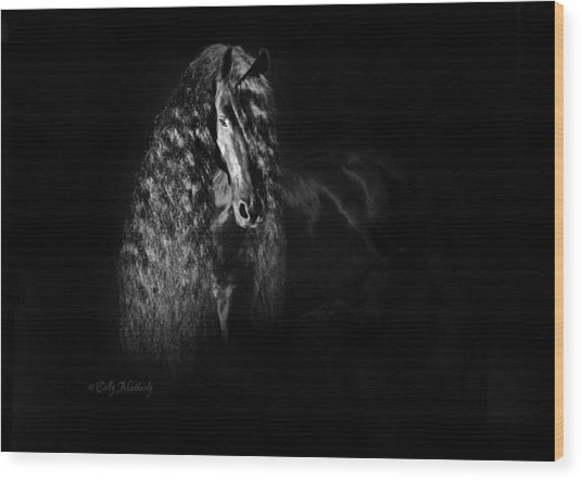 Statuesque Black Beauty Wood Print