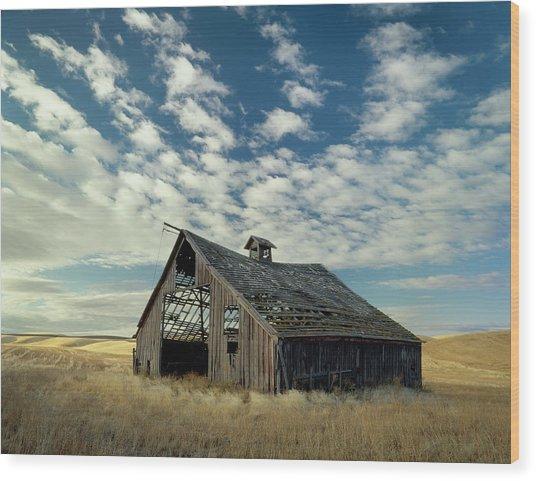 Steadfast On Little Alkali Flat Wood Print by Jerry McCollum