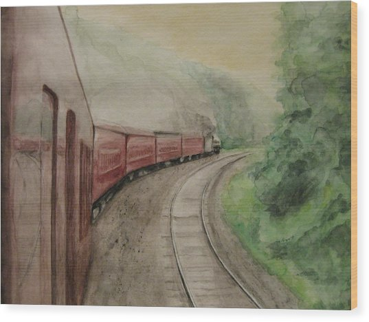 Steam Excursion Wood Print by Diana Prout