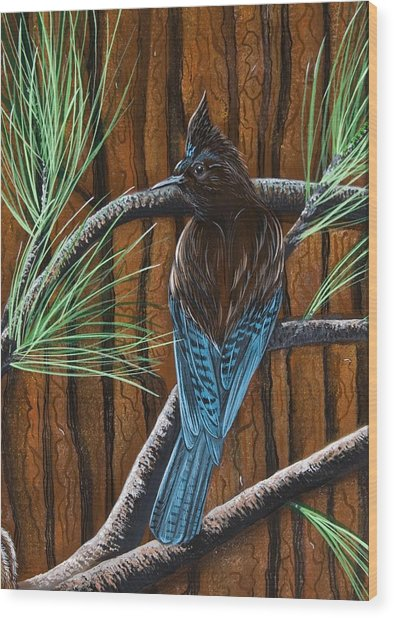 Stellar Jay Wood Print