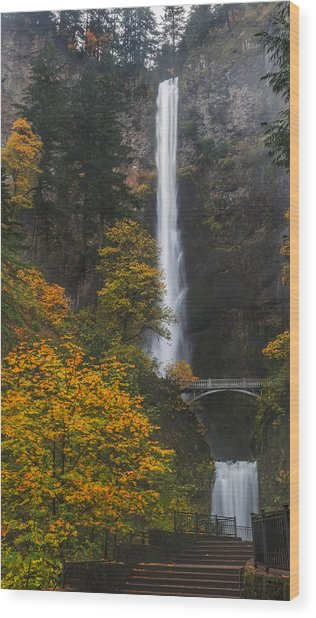 Step Up To Multnomah Wood Print