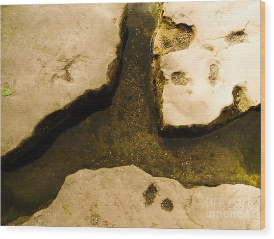Stepping Stones Wood Print by Jamel Watson
