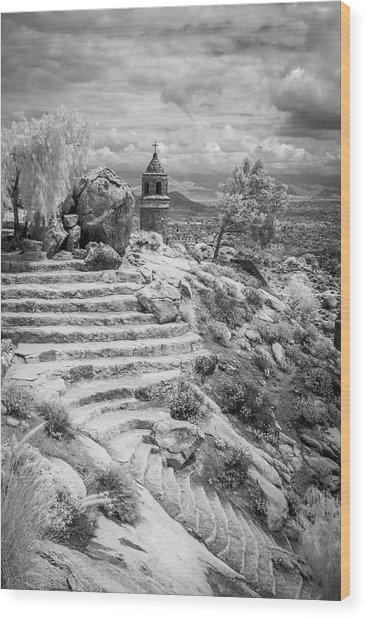 Steps And Peace Tower Wood Print