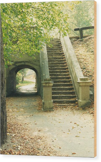 Steps And Tunnel Wood Print