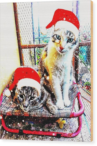 Stevie Mouse And Emmy Waiting For Christmas Wood Print