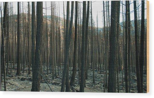 Stickpin Wood Print
