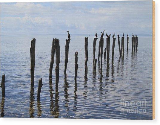 Sticks Out To Sea Wood Print