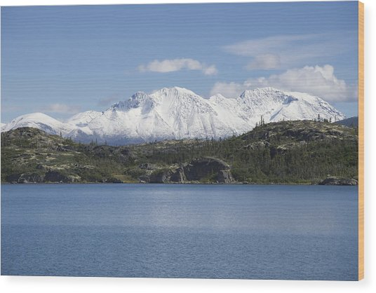 Stikine Mountains 7 Wood Print