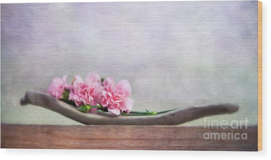 Still Life With Pink Carnations And Driftwood Wood Print
