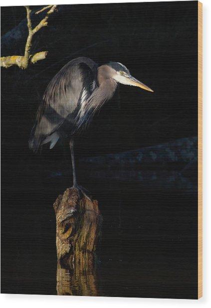 Stillness On The Hunt Wood Print