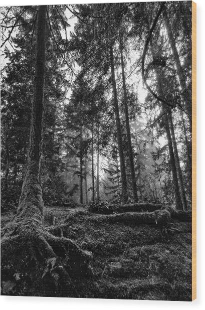 Stillpoint Wood Print