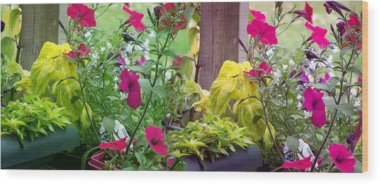 Stitched Flower Pot Photograph Wood Print by Laurie Kidd