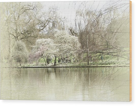 St. James Park London Wood Print