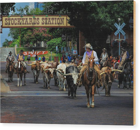 Stockyards Cattle Drive Wood Print