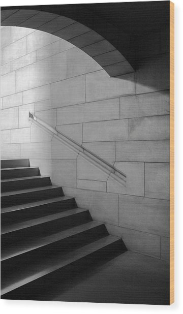 Stone And Steps Wood Print by Donald Schwartz