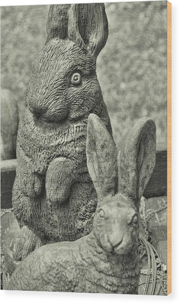 Stone Bunnies Wood Print by JAMART Photography