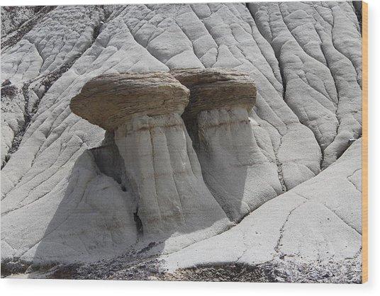Stone Mashrooms Wood Print by Sergey  Nassyrov