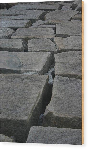 Stone Walk Wood Print by Dennis Curry