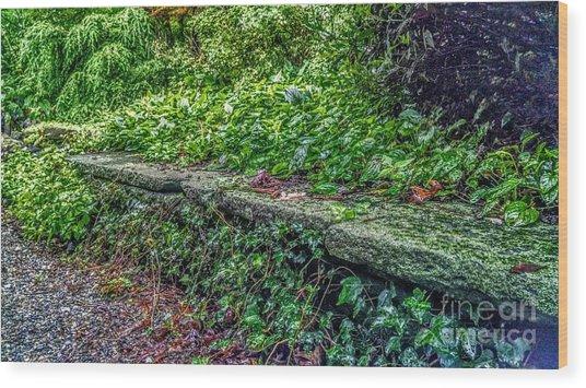 Stone Wall At Laurelwood Wood Print