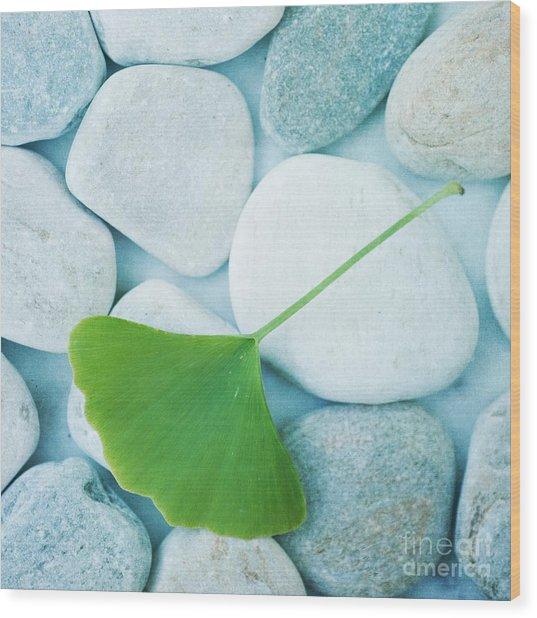 Stones And A Gingko Leaf Wood Print