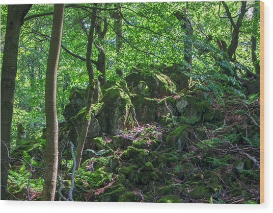 Stones In A Forest In Vogelsberg Wood Print