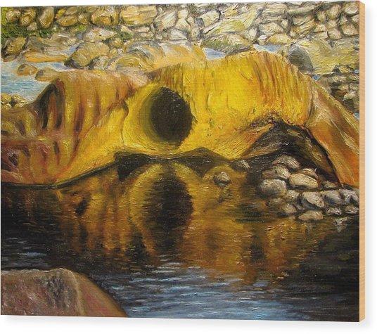 Stones Ocoee River In Tennessee Landscape Original Oil Paintings Wood Print by Natalja Picugina