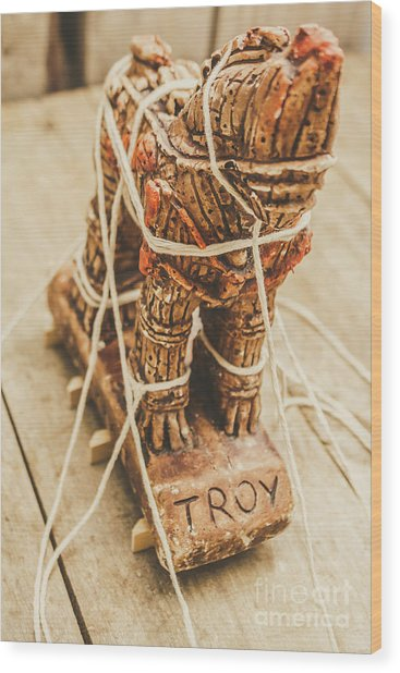 Stories From Ancient Troy Wood Print