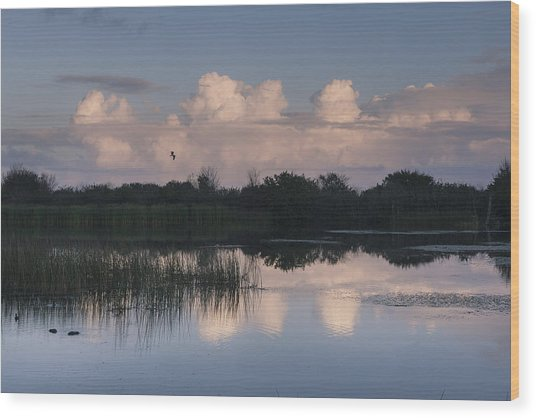 Storm At Sunrise Over The Wetlands Wood Print