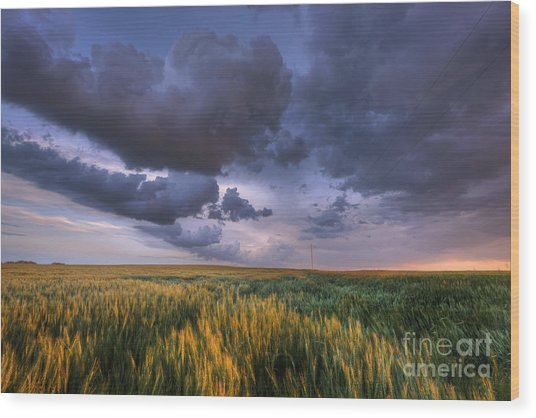 Storm Clouds Over Barley Wood Print