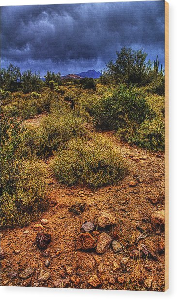 Storm Clouds Over The Sonoran Desert In Spring Wood Print