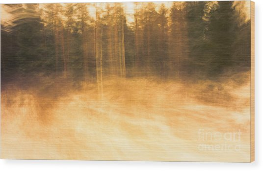 Storm In The Forest Wood Print