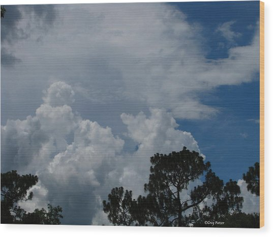 Storm Moving In Wood Print by Greg Patzer