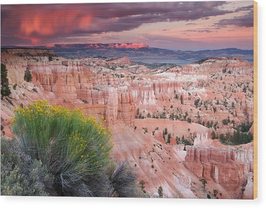 Storm Over Bryce Canyon Wood Print
