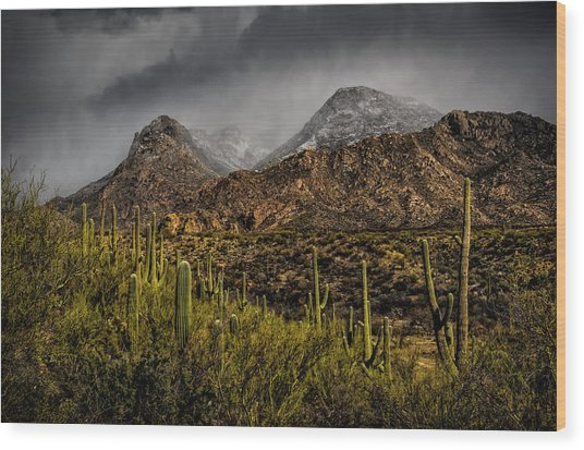 Storm Over Catalinas 15 Wood Print