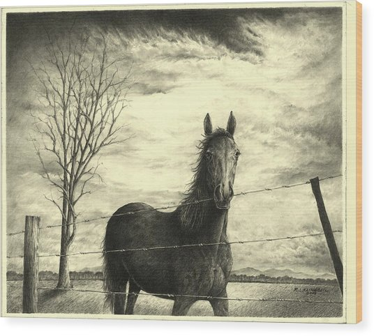 Storm Wood Print by Richard Klingbeil