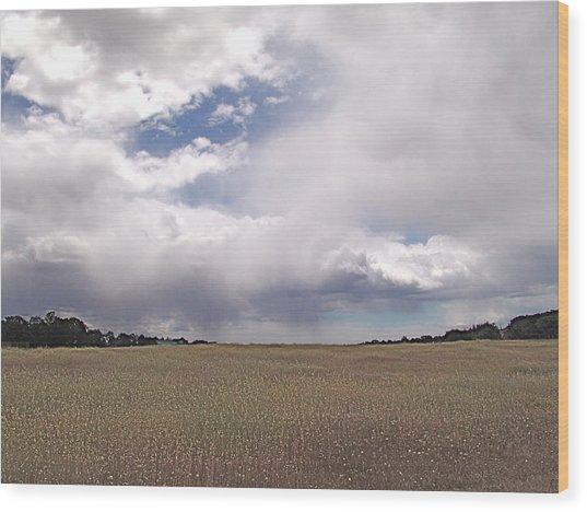 Stormy Day Wood Print by John Norman Stewart