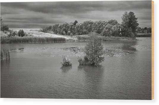 Wood Print featuring the photograph Stormy Lake. Malyi Lystven, 2013. by Andriy Maykovskyi