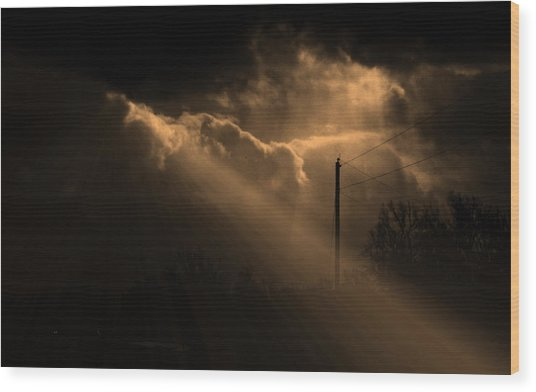 Stormy Sky And Light Wood Print by Martin Morehead
