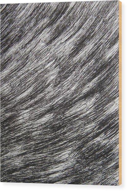 Stormy Wood Print by Uwe Schein