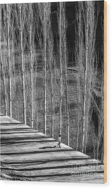 Story Of Light Wood Print