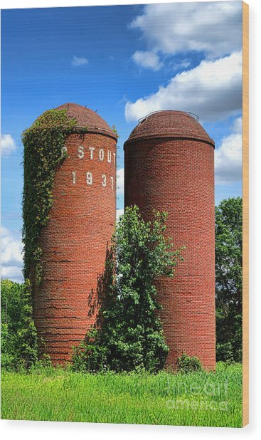 Stout 1931 Wood Print