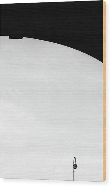 St.petersburg  #7785 Wood Print