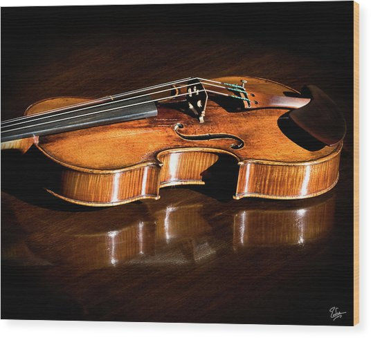 Stradivarius In Sunlight Wood Print