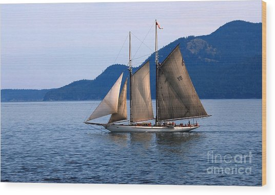 Strait Of Juan De Fuca Sailboat Wood Print