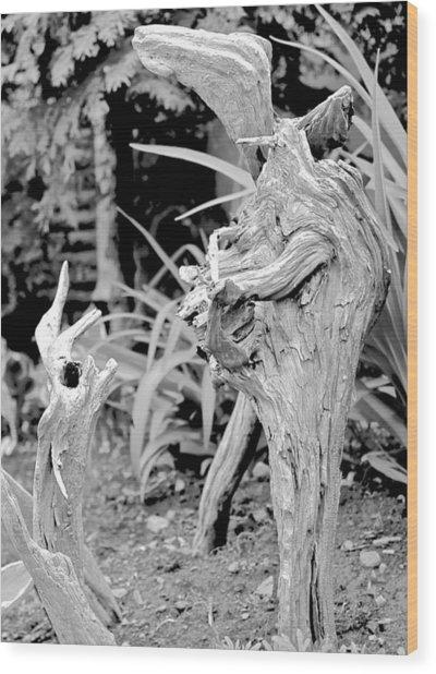 Strange Conversants Wood Print