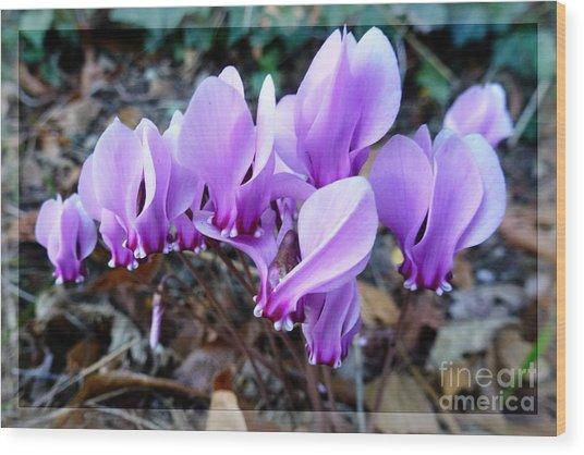 Strange Flower 4 Wood Print